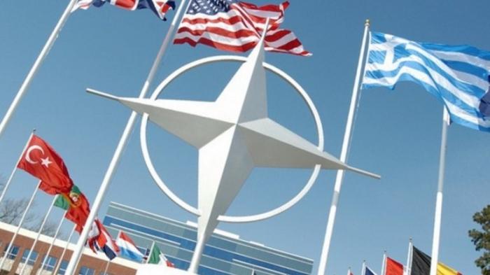 НАТО обвинило Россию в выходе США из ракетного договора