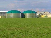 ЕБРР намерен запустить в Украине программу по биоэнергетике на EUR70-80 млн