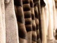 Депутаты предлагают запретить производство меха с 2025 г.
