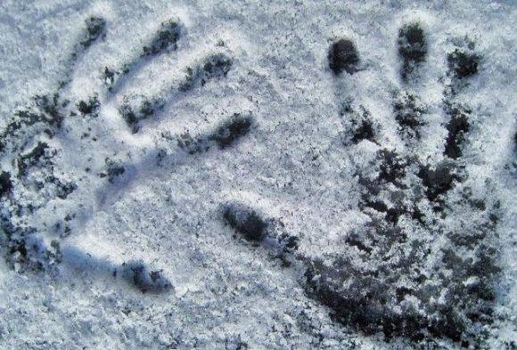 Буйный задержанный, которого копы высадили прямо на трассе, замерз насмерть